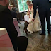 Bride shocked to see monkey ring bearer at her wedding