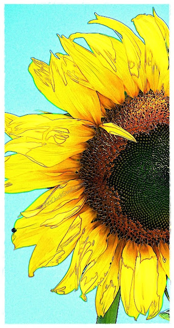 I Got Sunshine Digital Art