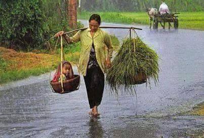 Jangan Malu Jika Orang Tuamu Bukan Orang Kaya, Saat Mereka Berjuang Untuk Yang Halal Demi Masa Depanmu