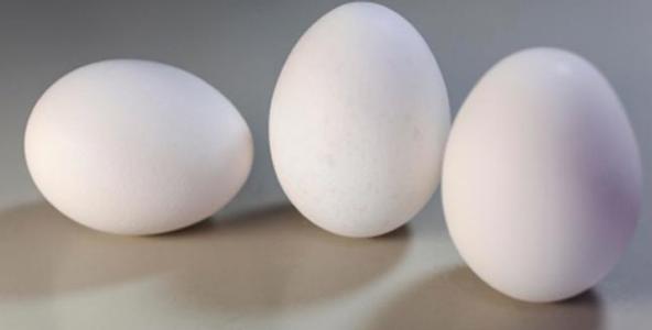 अंडे से होने वाले लाभ और हानि