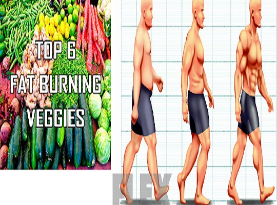 Top 7 Fat burning Veggies