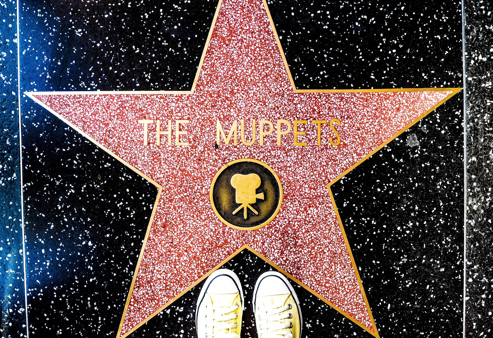 The Muppets Hollywood Star