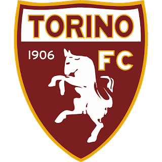 Logo DLS Torino FC