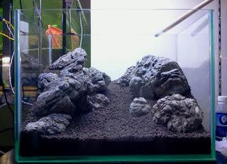 Manten Stone Jenis Batu untuk Aquascape yang Bagus
