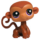 Littlest Pet Shop Carry Case Monkey (#189) Pet