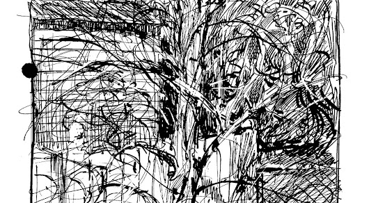 Twisty Tree and Ink Drawings