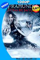 Inframundo: Guerras de Sangre (2016) Latino HD 1080P - 2016