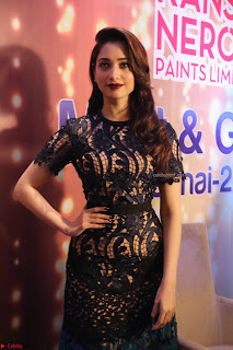 Tamannaah Bhatia at Launch of Kansai Nerolac new products Pics 010.jpg