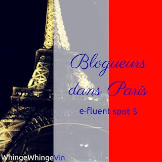 Blogueurs dan Paris: E-Fluent Spot 5