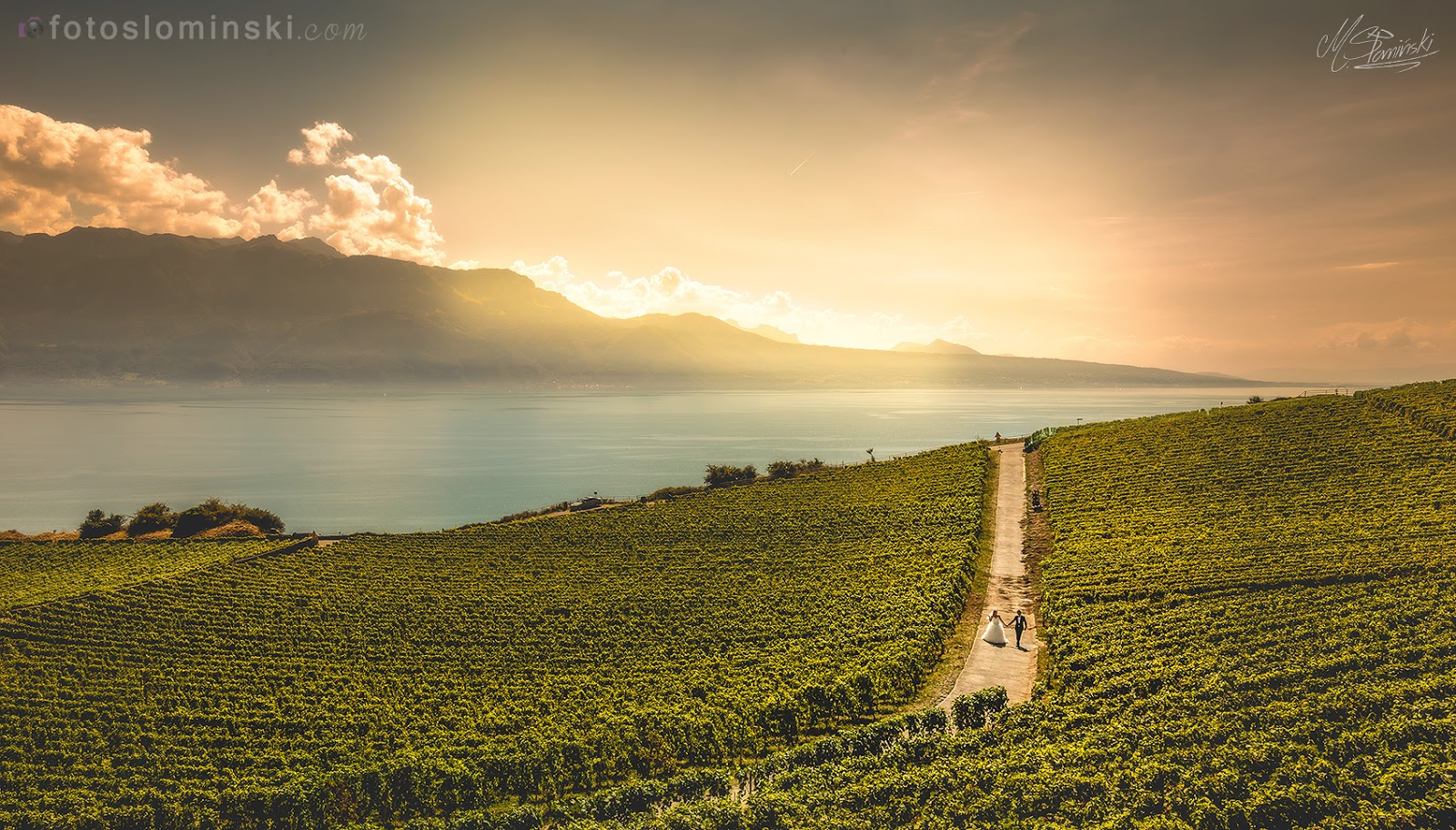 Sesja ślubna za granicą - Szwajcaria, winnice koło Montreux - Fotografia ślubna Wrocław #ZdjęciaSłomińśkiego. Fotograf Wrocław.