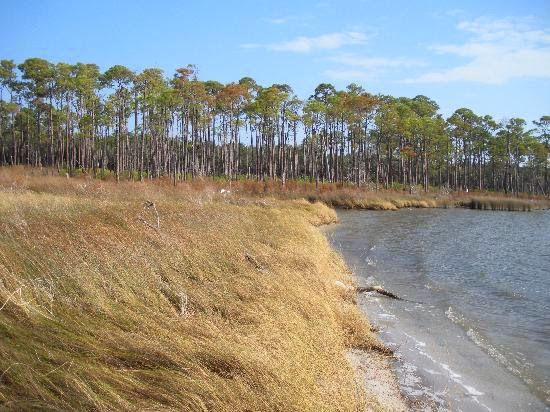 Bon Secour Wildlife Refuge, Gulf Shores AL