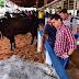 Governador participa de Feira Agropecuária de Apuí e destaca investimentos no setor