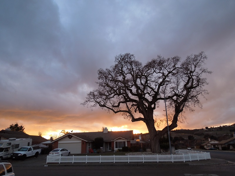 Just the Sky -Sunset from my Front Yard in Paso Robles,© B. Radisavljevic