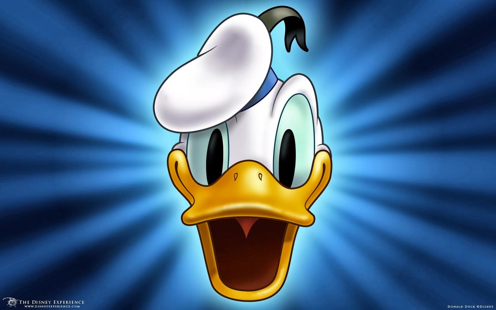 Donald duck hd images - photo#50