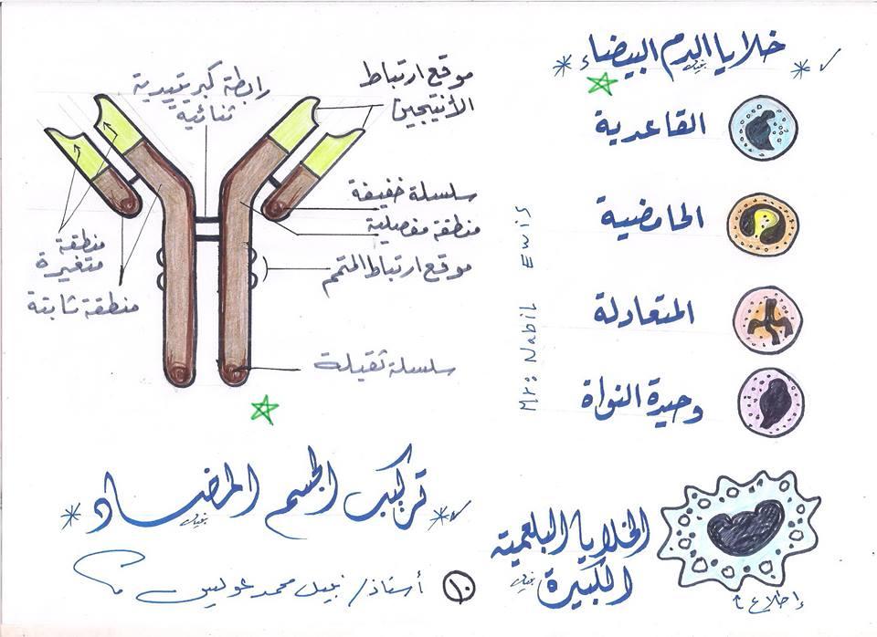 مراجعة رسومات الاحياء التى لن يخرج عنها امتحانات الثانوية العامة مستر نبيل عويس 10