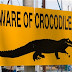 15,000 crocodiles reportedly escape from farm in South Africa