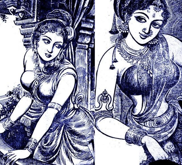 Image result for கடல்புறா