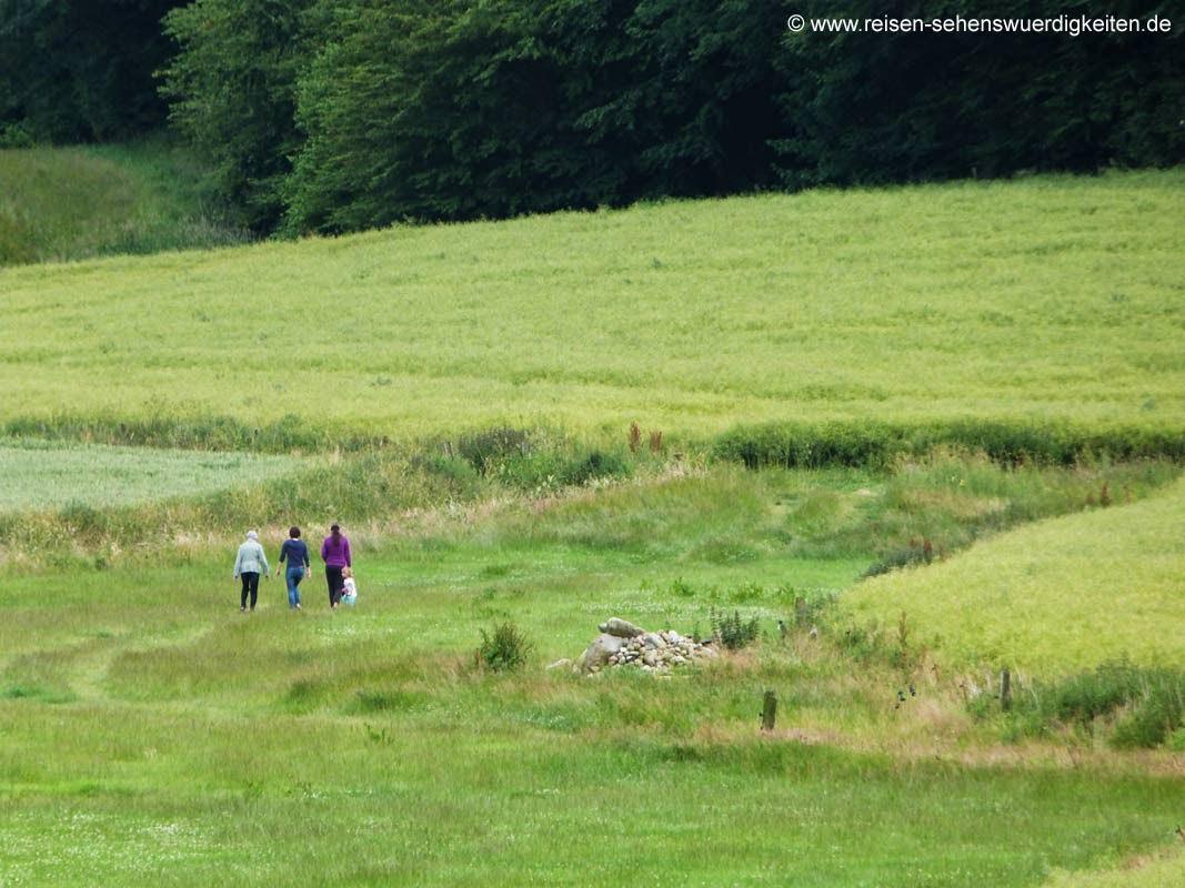 Wandern in der Natur Spaziergang durch Felder