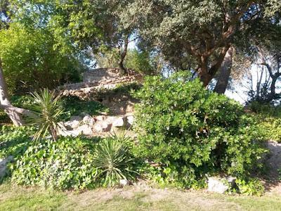 Parque de Can Vidalet en Esplugues de Llobregat