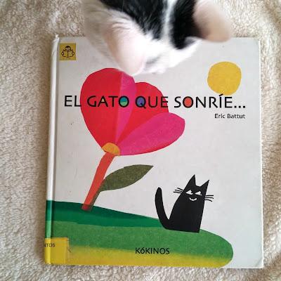 gato-sonrie