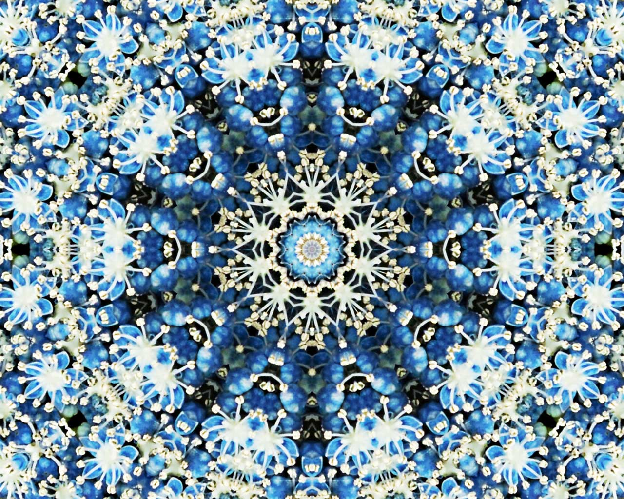 Kaleidoscope desktop free background by Jeanne Selep
