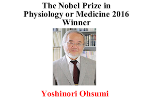 The Nobel Prize in Physiology or Medicine 2016