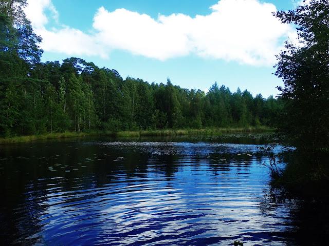 Północna Rosja (jezioro niedaleko Petersburga)