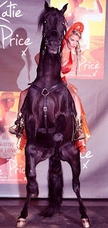 Katie Price Riding Horse Front Side