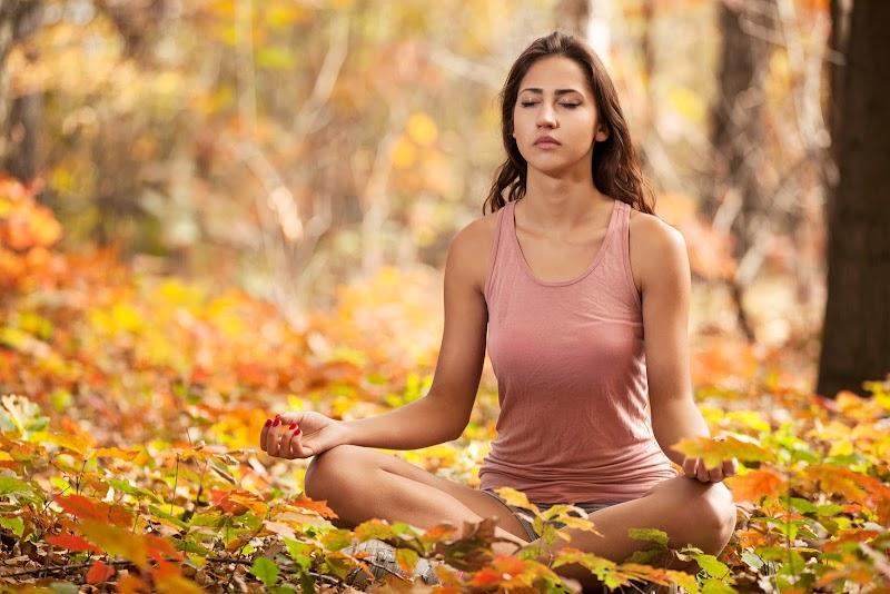 Free Audio Meditation