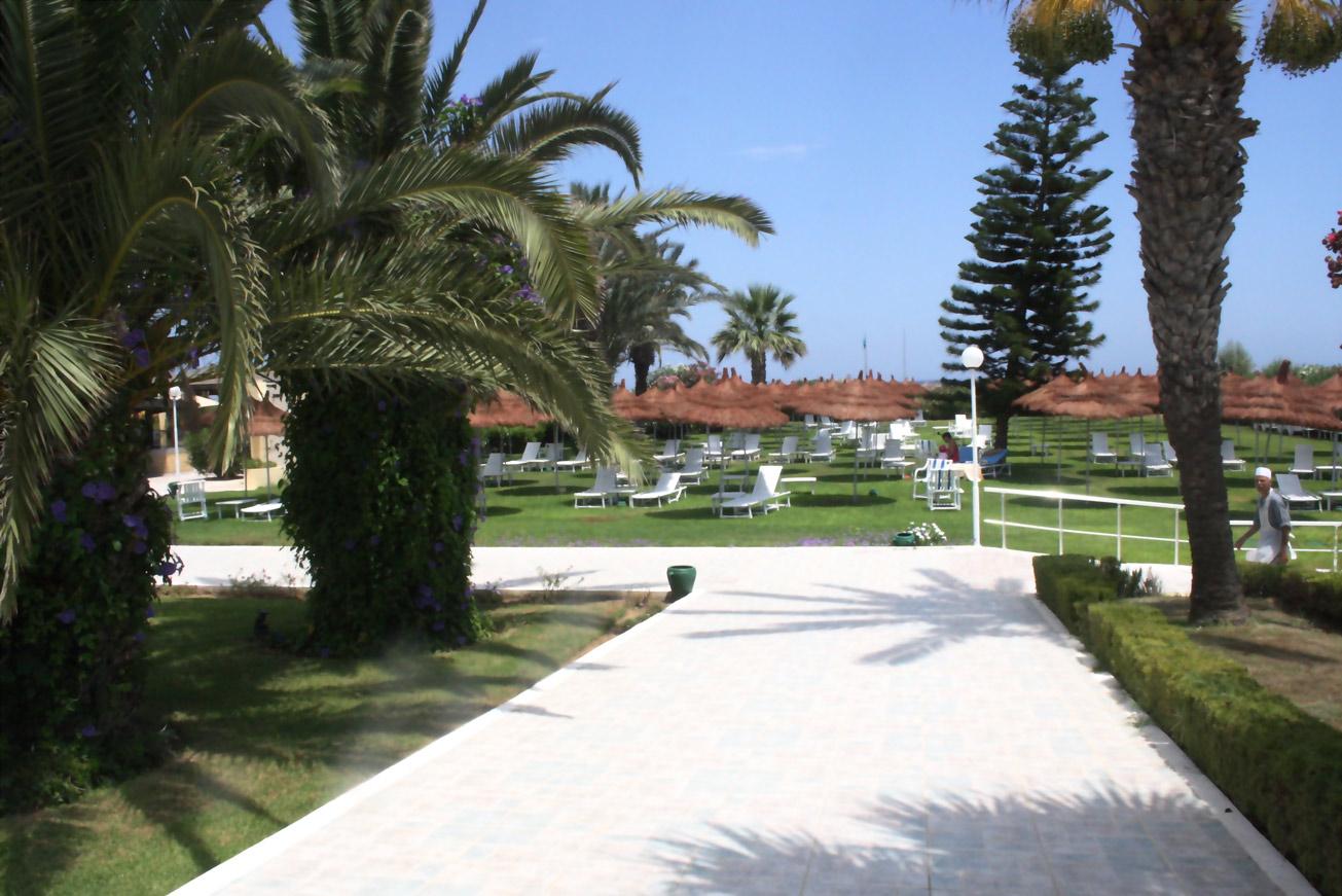 TUNISIA: PHOTO DIARY II. 9