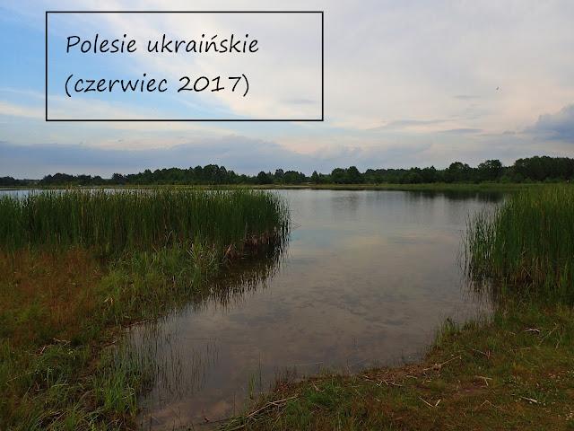 Szackie Jeziora - bagnisty region na zachodniej Ukrainie
