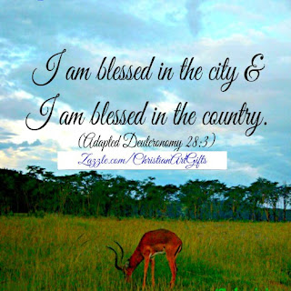 I am blessed in the city and I am blessed in the country. (Deuteronomy 28:3)