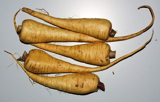 Alternative vegetables to spiralise when there are no courgettes - carrots, leeks, sweet potatoe, cabbage and parsnip.