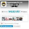 Cara Membuat Fanspage Facebook, Twitter, Google+ Dalam Satu Widget Di Blog