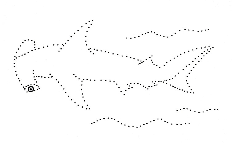 http://www.samanthasbell.com/wp-content/uploads/2015/08/hammerhead-shark-dot-drawing.pdf