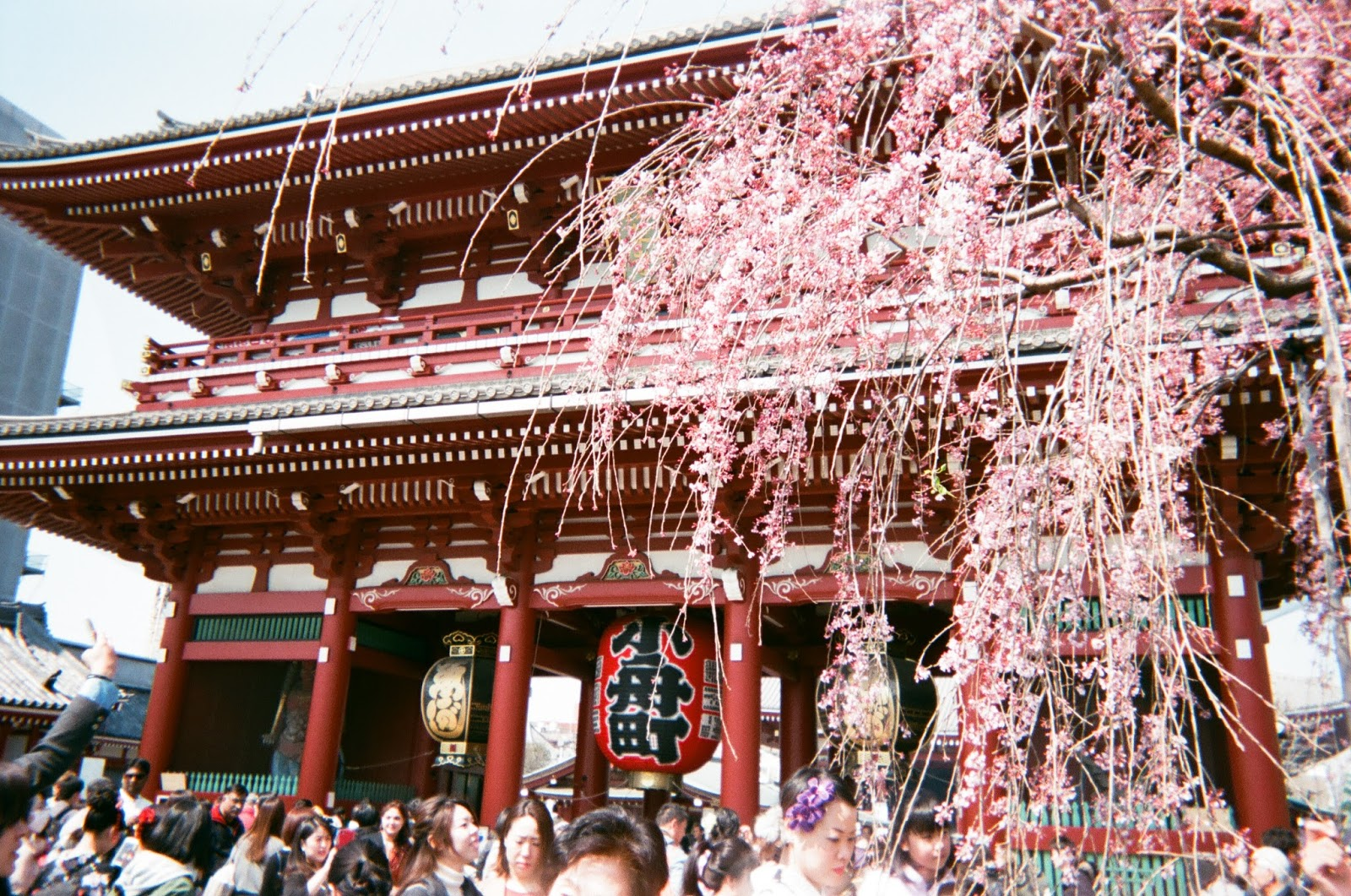 Tokyo in Disposable Camera Sensoji Temple | www.bigdreamerblog.com