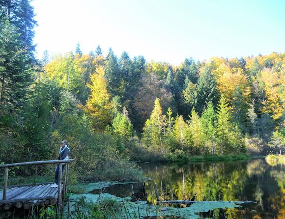 Национальный природный парк «Сколевские Бескиды». Озеро Журавлиное (Мёртвое)