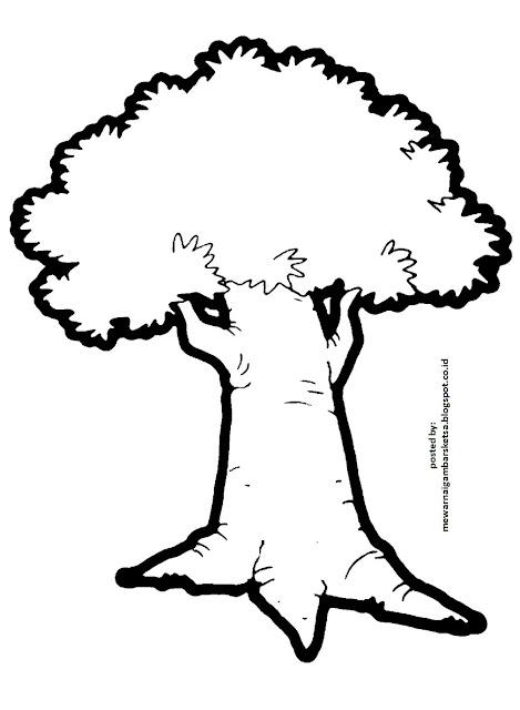 mewarnai gambar mewarnai gambar sketsa pohon 3