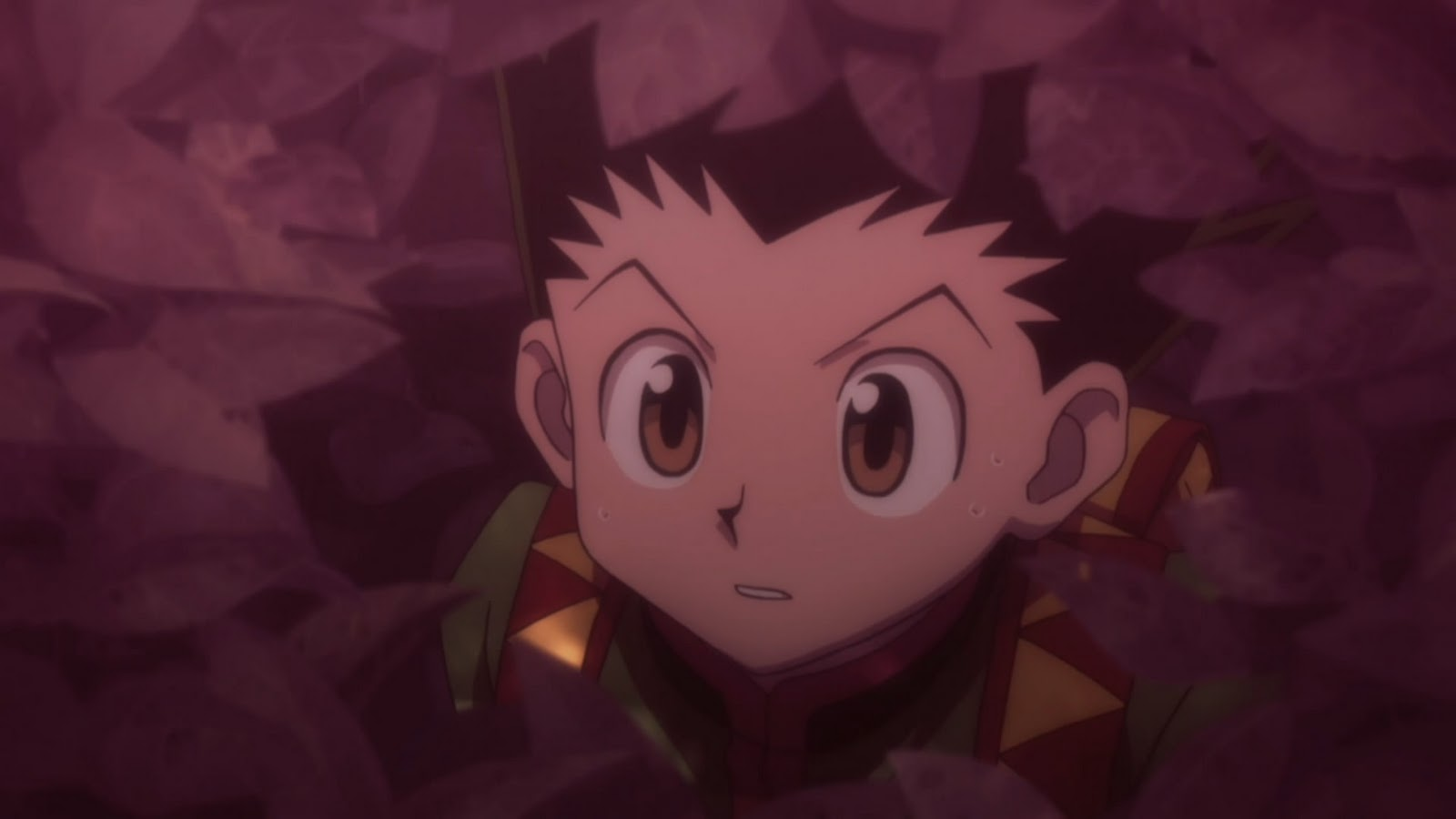 Hunter X Hunter Fortsetzung Anime
