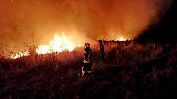 Incendiu la Calafat : Au ars aproape șase hectare !
