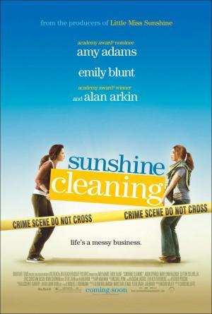 sunshine-cleaners