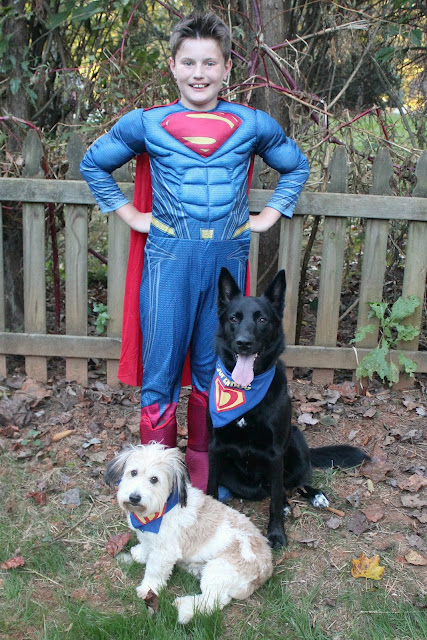Superman and Krypto Dog Costumes