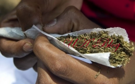 Indian Hemp Is Now Being Served At Burials And Other Ceremonies In Onitsha - Shocking Report