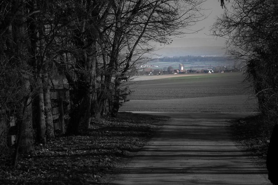 Weg und Allee zeigen auf ein entferntes Dorf