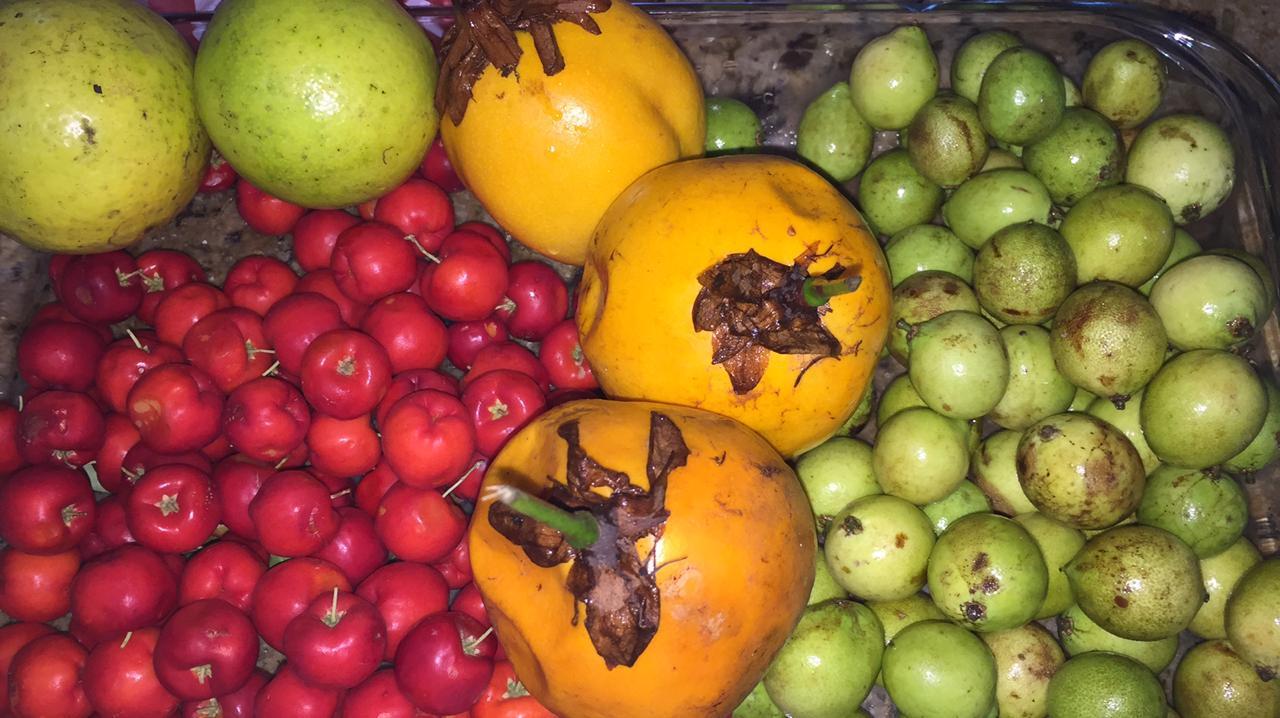 Corazon Frutas De Puerto Rico Wwwmiifotoscom