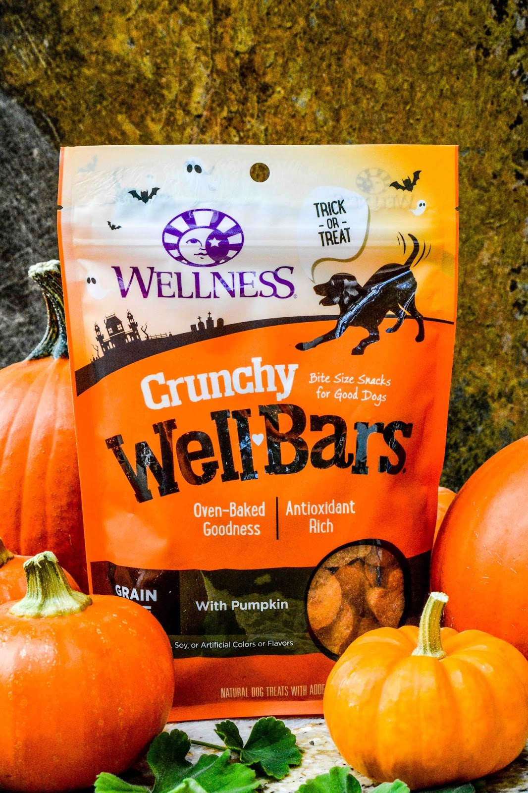 Wellness Treats for Dogs