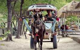 Cidomo, Desa Gili Lombok NTB