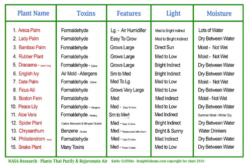 Transformations life coaching plants that purify your air - How often should you water your garden ...