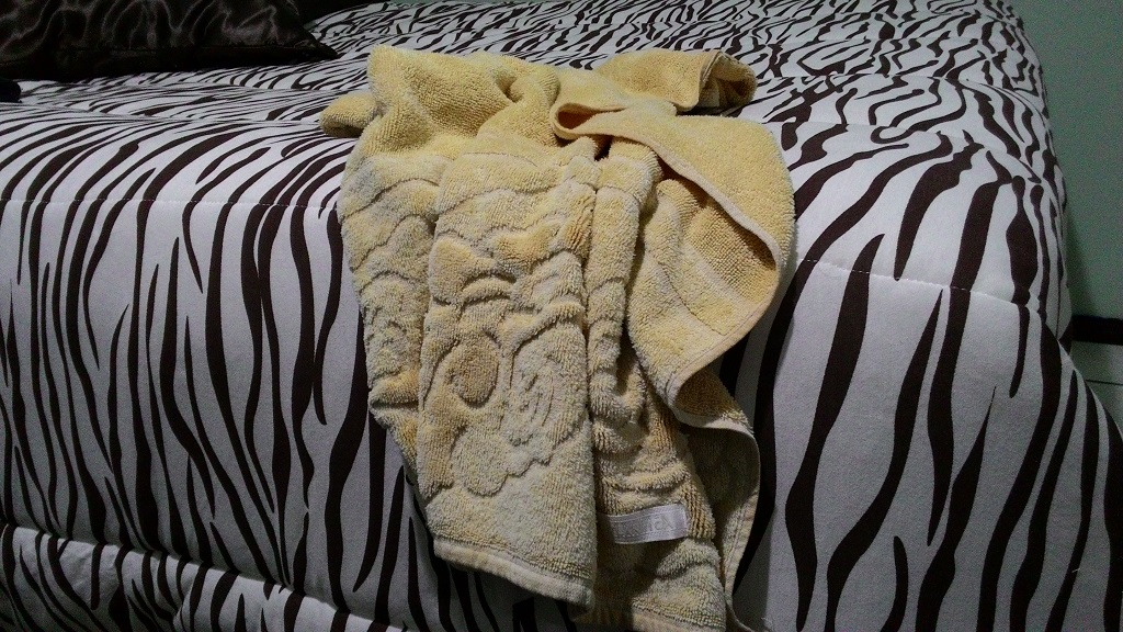 dia da toalha