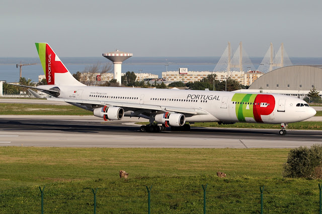 TAP Air Portugal Airbus A340-300 Touched Down